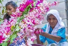 Bloem & Palmfestival in Panchimalco, El Salvador Stock Fotografie