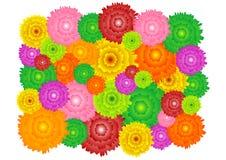Bloem pattern_38 Stock Afbeeldingen