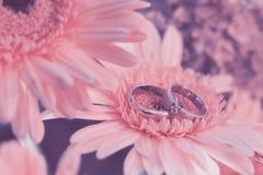 bloem, ring die, schoonheid, weding, Stock Foto