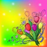 Bloem, tulpen, achtergrond Stock Fotografie