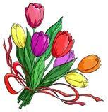 Bloem, tulpen, boeket Royalty-vrije Stock Foto's