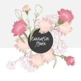 bloem van de illustratie de Gevoelige anjer royalty-vrije illustratie