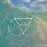 Bloem van het leven - het met elkaar verbinden omcirkelt oud symbool voor vage photorealistic aardachtergrond heilig Royalty-vrije Stock Foto