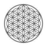 Bloem van het Levens Geometrisch Ontwerp royalty-vrije illustratie