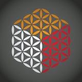 Bloem van het levenssymbool Stock Foto