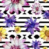 Bloem van het waterverf de kleurrijke Afrikaanse madeliefje Bloemen botanische bloem Naadloos patroon als achtergrond stock illustratie