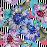 Bloem van het waterverf de kleurrijke Afrikaanse madeliefje Bloemen botanische bloem Naadloos patroon als achtergrond royalty-vrije illustratie