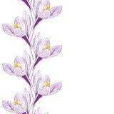 Bloem van saffraan vector illustratie