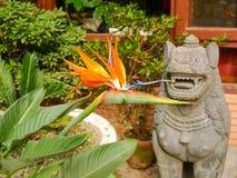 Bloem van strelitzia tegen van boeddhistisch standbeeld van beschermerleeuw stock fotografie