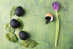 Bloem van tulp met zwarte eieren en sesam op de groene achtergrond Concept het gezonde eten Royalty-vrije Stock Foto's