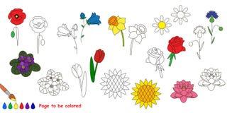 Bloem vastgestelde kleurrijk vector illustratie