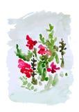 Bloem, vectorillustratie Royalty-vrije Stock Afbeelding
