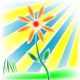 Bloem, zon en gras vector illustratie