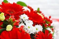 Bloemachtergrond van rode bloemen stock foto's