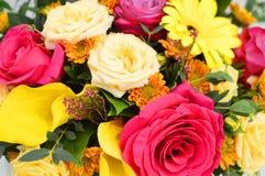 Bloemachtergrond van verse bloemen stock afbeelding