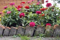 Bloembed in de tuin Stock Afbeelding