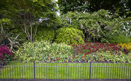 Bloembed en gras achter kleine omheining Royalty-vrije Stock Foto