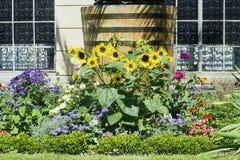 Bloembed met verschillende bloemen in tuin royalty-vrije stock fotografie