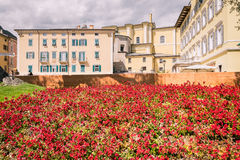 Bloembedden in een park met huizen op de achtergrond royalty-vrije stock afbeeldingen