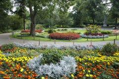 Bloembedden in Park stock foto