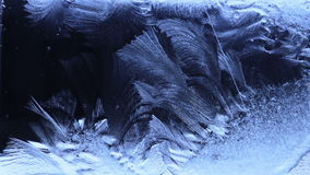 Bloemblaadjes van de bevroren waterwinden op het glas stock video