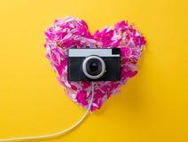 Bloembloemblaadjes in hartvorm en camera stock foto's