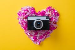 Bloembloemblaadjes in hartvorm en camera royalty-vrije stock foto's