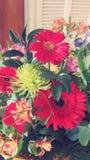 Bloemboeket Gemengde Kleuren Royalty-vrije Stock Foto