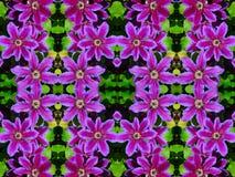 Bloemcaleidoscoop stock afbeelding
