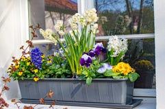 Bloemdoos met diverse bloemen stock fotografie