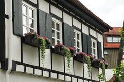 Bloemdozen bij vensters van oud huis stock foto's