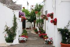 Bloemen aan Alberobello stock foto's