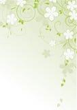 Bloemen abstract ontwerpelement Royalty-vrije Stock Afbeelding