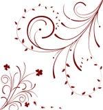 Bloemen abstractie Royalty-vrije Stock Foto's