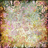 Bloemen abstractie Stock Fotografie