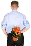 Bloemen achter een rug Stock Foto's