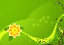 Bloemen achtergrond 04 Stock Foto
