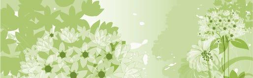 Bloemen achtergrond. Royalty-vrije Stock Foto's