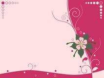 Bloemen Achtergrond Stock Afbeeldingen