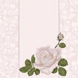 Bloemen achtergrond De huwelijkskaart of de uitnodiging met nam op pastelkleur toe Stock Foto