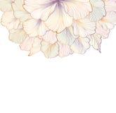 Bloemen achtergrond De kaart van de groet met bloem Bloei grens stock illustratie
