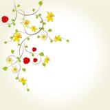 Bloemen achtergrond, groetkaart vector illustratie