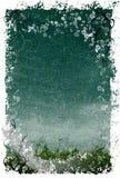 Bloemen Achtergrond Grunge Stock Foto