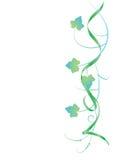 Bloemen achtergrond, klimop Royalty-vrije Stock Fotografie