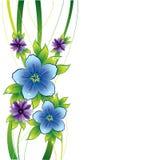 Bloemen achtergrond met blauwe bloemen en dew-drop Royalty-vrije Stock Fotografie