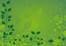 Bloemen Achtergrond, ornament, bladeren Royalty-vrije Stock Foto's
