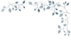 Bloemen Achtergrond, ornament, bladeren Stock Afbeelding