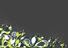Bloemen achtergrond in trillende kleurrijke schaduwen Stock Foto's