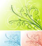 Bloemen achtergrond, vector Royalty-vrije Stock Fotografie