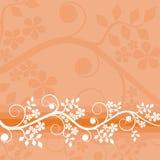 Bloemen achtergrond, vector Royalty-vrije Stock Afbeeldingen